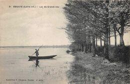 BOUAYE      LAC DE GRAND LIEU - Bouaye