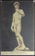 DAVIDE Di Michelangelo - Firenze - Formato Piccolo Non Viaggiata - Sculptures