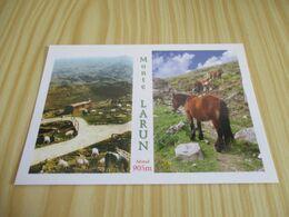 Monte Larun (64).Vues Diverses. - Francia