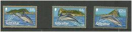 Gibraltar 2014 Dolphins, Sea Animals, Marine Life Mi 1622-1624 MNH(**) - Gibraltar