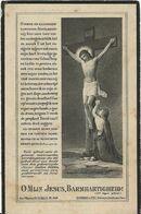 DP. LUDOVICUS PITTOORS ° BROECHEM 1869- + 1926 - Godsdienst & Esoterisme