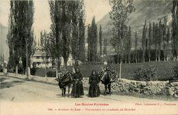 Luz * L'avenue * Paysannes Se Rendant Au Marché * âne - Luz Saint Sauveur