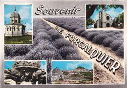 FORCALQUIER (dil476) - Forcalquier