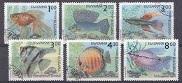 BULGARIEN  1993  MI.NR.4049-4054  Zierfische USED / GEBRUIKT / OBLITERE - Usati
