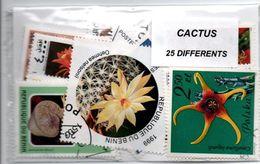 """Lot 25 Timbres Thematique """" Cactus """" - Sukkulenten"""