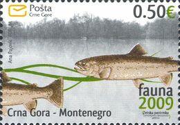 2009, Fish, Fauna, Montenegro, MNH - Montenegro
