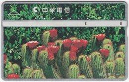 TAIWAN B-108 Hologram Chunghwa - Plant, Flower, Cactus - 977H - Used - Taiwan (Formosa)