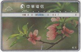 TAIWAN B-115 Hologram Chunghwa - Plant, Flower - 854H - Used - Taiwan (Formosa)