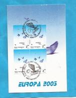 B-SAR-O1  2003   301   BOSNIA ERZEGOVINA  BOSNA SARAJEVO   EUROPA CEPT PLAKATKUNST  ZUM FILM -SNIJEG  KART-MAX - 2003