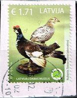 Lettland 2016,Michel# 975 O Aberrant Birds (Lyrurus Tetrix & Motacilla Alba) - Latvia