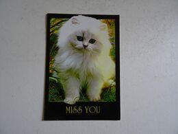 CPSM  Le Chat  MISS YOU TBE - Katzen