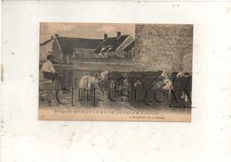 Sermaise (91) : Les Vaches à L'abreuvoir Du Hameau De Blancheface En 1910 (animé) PF. - Autres Communes