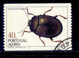 ! ! Portugal - 1984 Insects - Af. 1674a - Used - 1910-... République