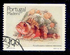 ! ! Portugal - 1989 Fishes - Af. 1909a - Used - 1910-... République