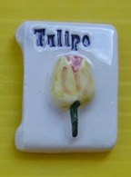 Fève  - MH Moulin à Huile  -  Fleur Tulipe - Réf AFF 1993 24 - Fèves