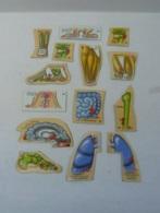 MAGNETS, LOT DE 14 CORPS HUMAIN - Animals & Fauna