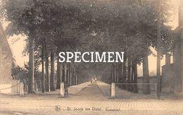 Kasteeldreef - Sint-Joris Ten Distel - Beernem