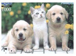 (13-8-202 X) 2 Cat - Chat - Katze - ネコ -Carte Tephone / Phonecard / Telefonkarte / Carta Telefonica / Tarjeta Telefónica - Katzen