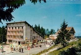 CPSM Sommet Du Col De La Faucille    L3102 - France