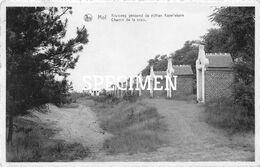 Kruisweg Genoemd De Vijftien Kapellekens - Mol - Mol