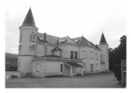 LES ARDILLATS - Château - France