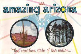 AMAZING ARIZONA (U.S.A.) - INCROYABLE ARIZONA. - Esplorazioni/Viaggi