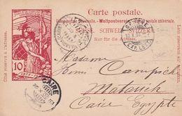 2 Ganzachen - UPU - 1900  (00806) - Enteros Postales