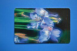 Vladimir. Iris. 50 Un. 30.06.2008 - Russland