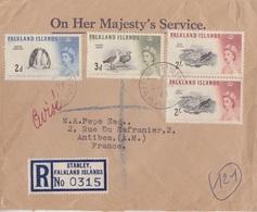 Lettre Rec. Des Falkland N° 125, 126, 133 X 2 (Manchot, Etourneau, Bernache), Obl. Port Stanley Le 22 MY 61 - Falkland