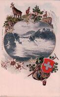 Rheinfall, Sac D'alpiniste, Chamois, Edelweiss Et Armoirie, Litho Gaufrée (19488) - SH Schaffhausen