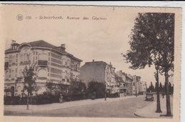 SCHAERBEEK / BRUSSEL / BRUXELLES / AVENUE DES GLYCINES - Schaarbeek - Schaerbeek