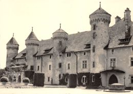 74-RIPAILLE CHATEAU-N°3732-A/0293 - Andere Gemeenten
