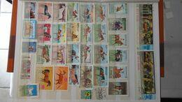 G110 Collection Thématique CHEVAUX . A Saisir !!! - Stamps