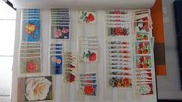 G112 Collection Thématique ROSES. A Saisir !!! - Stamps