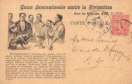 UNION INTERNATIONALE CONTRE LA VIVISECTION- 127 RUE DE RENNES PARIS - Advertising