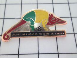 713K Pins Pin's / Rare & Belle Qualité THEME ANIMAUX / SORTE DE CAMELEON ? GROUPE DES GRANDS MOULINS DE PANTIN Tchao ! - Dieren