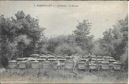 RAMBOUILLET La Ruche.Le Rucher - Rambouillet