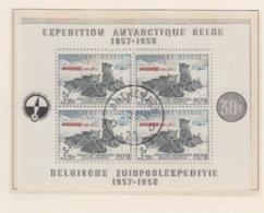 BELGIUM USED COB BL 31 ANTARCTIQUE - Blocs 1924-1960