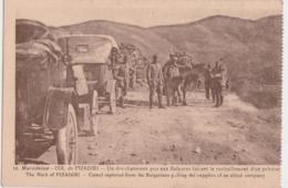 Ca - Cpa Macédoine - Col De PIZADIRI - Un Des Chameaux Pris Aux Bulgares Faisant Le Ravitaillement D'un Peloton - Macedonia