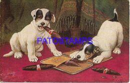 140400 ART ARTE SIGNED COUPLE DOG PUPPY WITH HABANS POSTAL POSTCARD - Ilustradores & Fotógrafos