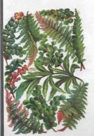 Découpis PLAQUE FEUILLAGE 11 X 17 Cm Dos Vierge  32 - Flowers