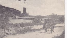 IRL1  --  WEXFORD  --  FERRY CARRIG  --  1904 - Wexford