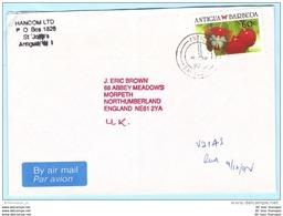 ANTIGUA Und BARBUDA Brief Cover Lettre 1178 Schmetterling Tiere (27281) - Antigua E Barbuda (1981-...)