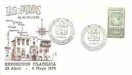 POSTMARKET ESPAÑA  1975  LAS PALMAS - Félins