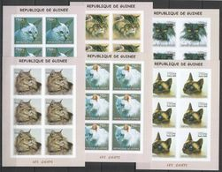 KV274 IMPERFORATE 2002 GUINEA FAUNA PETS ANIMALS CATS LES CHATS !!! 6SET MNH - Chats Domestiques