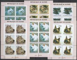 KV273 2002 GUINEA FAUNA PETS DOMESTIC ANIMALS CATS LES CHATS !!! 6SET MNH - Chats Domestiques