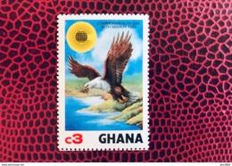 GHANA 1983 1 V Neuf ** MNH YT 772 Aigle Bald Eagle Ucello Oiseau Bird Pájaro Vogel - Pappagalli & Tropicali