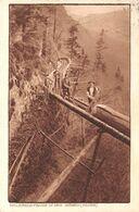 Holztransport In Den Bergen - GR Graubünden