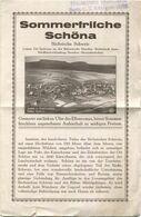 Deutschland - Sommerfrische Schöna 20er Jahre - Faltblatt Mit 2 Abbildungen - Wohnungsverzeichnis - Folletos Turísticos
