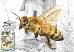 Belarus 2020 Bee Beekeeping Fauna Insects Maxicard MC - Bielorussia